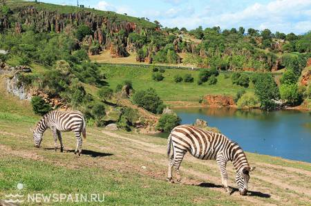Природный парк Кабарсено